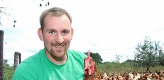 Biolandhühner-aus-Raesfeld-Erle-von-Maik-Buskamp