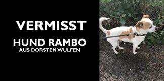 Hund Rambo
