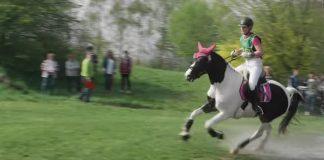 Reiterverein Lippe-Bruch Gahlen