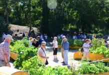 Essbarer Garten Dorsten von der Stadtkrone
