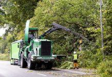 Baumfällarbeiten Straßen NRW