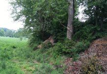 Illegaler Gartenmüll mit Bauschutt auf der Hardt in Dorsten