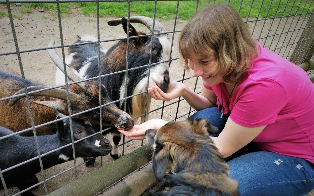 Hunde sind im Wildpark Frankenhof erlaubt. Foto: André Elschenbroich