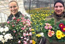 Blumen-Aldenhoff-und-Hethor