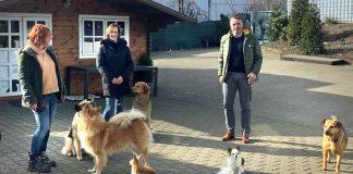 Hundeschulen-in-Not-Michael-Hübner